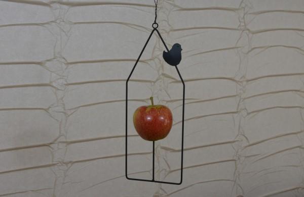 Apfelhaus aus Draht mit kleinem Vogel